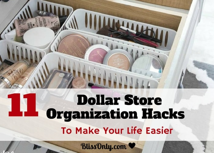 11 Dollar Store Organization Hacks To Make Your Life Easier
