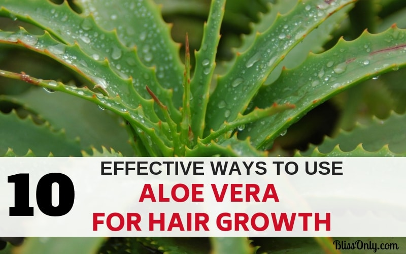 10 Effective Ways To Use Aloe Vera For Hair Growth