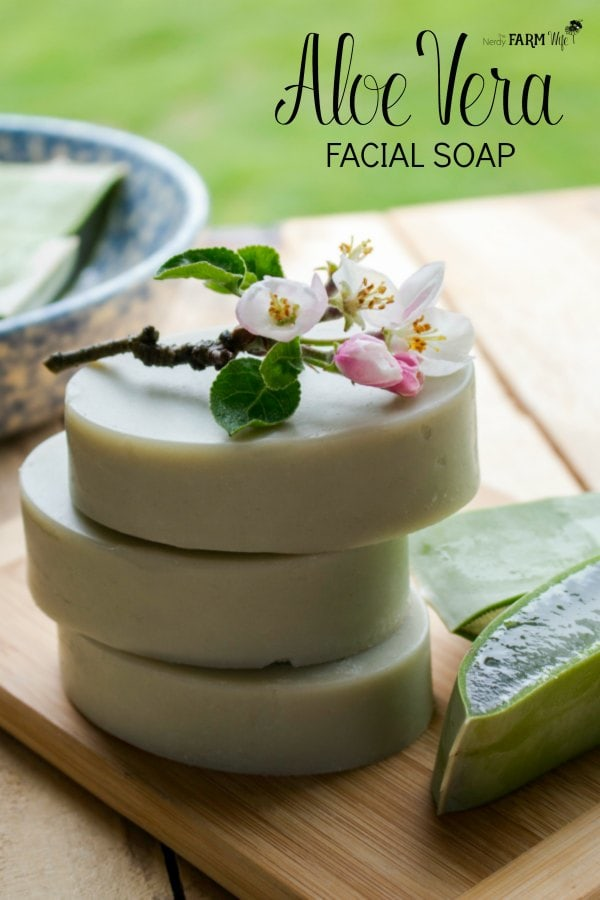 aloe vera gel skin care recipes